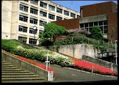 中央階段のつつじ「卒業アルバム1981~1985」より