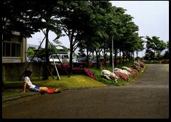 駐車場(26棟建設前)「卒業アルバム1981~1985」より